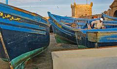 Blue Boats - in Explore 6/18/2017 (Ellsasha) Tags: essaouira northafrica morocco harbor harbour blueboats boats bateaudepêche bateau barque barcodepesco pescador