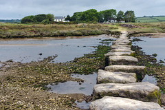Round Wales Walk 77 - Dwyran Stepping Stones (Nikki & Tom) Tags: anglesey angleseycoastpath uk wales walescoastpath ynysmôn path steppingstones