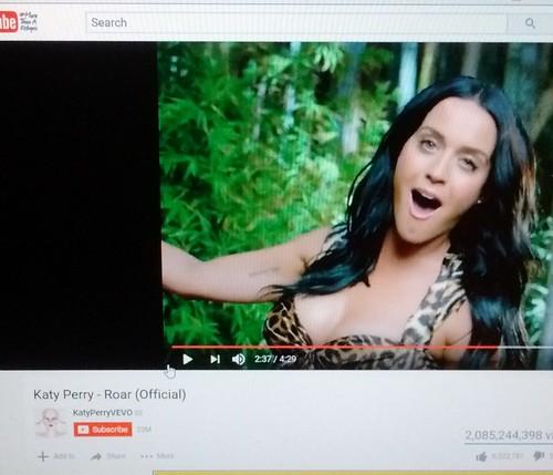 Katy Perry fan photo