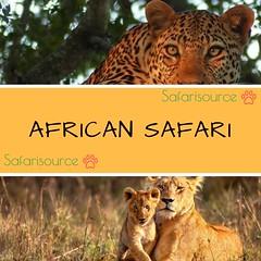 Going on an Adventurous trip to Africa? (Angie_traveller) Tags: africansafari safaritravel africa travel safari adventure wanderlust