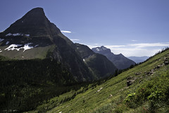 Heights of Summer (courtney_meier (away)) Tags: bearhat bearhatmountain glacier glaciernationalpark landscape montana nationalpark northernrockies rockymountains usnationalpark afternoon afternoonlight alpine mountains summer wildflower wildflowers