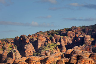 Shapes of the Bungles