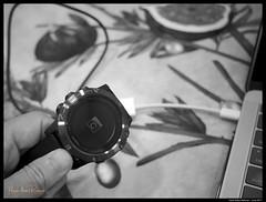 170615 Fenix 5X 32 (Haris Abdul Rahman) Tags: garmin fenix5x gpswatch tech harisrahmancom macro closeup monochrome harisabdulrahman fotobyhariscom ricohgr kualalumpur wilayahpersekutuankualalumpur malaysia