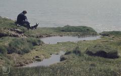 End of Cwm Mawr, Groenlandia site. Dr John Howden, Heritage Coast officer