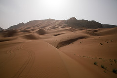 Desert shoot in Dubai (therealmarky) Tags: desert dubai sand dunes filmshoot camels sunlight backlight landscape nature