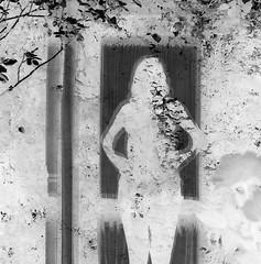 Zelfportret (Floortje Walraven) Tags: zelfportret selfportrait zwartwit blackwhite photoshop invert omkeren raam tuin window garden