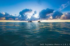 Lanikai Sunrise (j . f o o j) Tags: nikond610 hawaii kailua lanikaisunrise lanikai nikkor50mmf12ais fisheye aloha