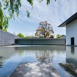 Garden of D.T.Suzuki Museum (鈴木大拙館)