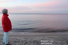 s170525b_3845+_Binz_Strand (gareth.tynan) Tags: rügen binz bird rasenderroland prora putbus park sand sea stimmung