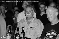 2017 Bosuil-Het publiek bij The Road Home en The Brandos 8-ZW