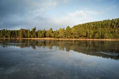 Lake Lauglovatnet (Helena Normark) Tags: beautifullight ice reflection sunstar lauglovatnet leinstrandmarka trondheim sørtrøndelag norway norge sonyalpha7 a7 voigtländer voigtlanderultron21mmf18 cv2118