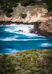 Headland Cove at Point Lobos (2)