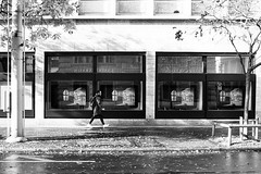 fall (gato-gato-gato) Tags: 35mm asph ch hp5 iso400 ilford leica leicamp leicasummiluxm35mmf14 mp mechanicalperfection messsucher schweiz strasse street streetphotographer streetphotography streettogs suisse summilux svizzera switzerland wetzlar zueri zuerich zurigo z¸rich analog analogphotography aspherical believeinfilm black classic film filmisnotdead filmphotography flickr gatogatogato gatogatogatoch homedeveloped manual rangefinder streetphoto streetpic tobiasgaulkech white wwwgatogatogatoch zürich manualfocus manuellerfokus manualmode schwarz weiss bw blanco negro monochrom monochrome blanc noir strase onthestreets mensch person human pedestrian fussgänger fusgänger passant zurich