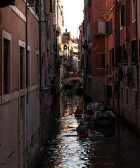 View upon Venice's Canals and Alleys (filippogatteschi) Tags: venice venezia lagoon canal view sight perspective tamron2470 canoneos70d 70d daylight daytime light colorful colorimage colors reflection darks contrast tones bridge sunlight shadows architecture walls windows arches detail sky canoeing sport boat activity warmcolors warmth summer