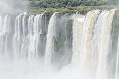 _RJS8384 (rjsnyc2) Tags: 2017 argentina brazil iguazu landscape nikon photographer remotesilver remoteyear richardsilver richardsilverphoto richardsilverphotography southamerica travel travelphotographer travelphotography water waterfalls