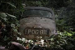 Abandoned Rover 90 (ducatidave60) Tags: fuji fujifilm fujixt1 fujinonxf1024mmf4 abandoned decay dereliction urbandecay urbex