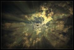 Spiritual (patrick.verstappen) Tags: spiritual bird animal clouds texture textured twitter textuur belgium photo picassa pinterest pat pet montenaken nikon d7100 sigma summer