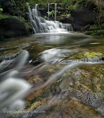 wonderfull water (donnnnnny) Tags: waterfall naturalbeauty rockshelf colour bush creek valley australia nsw