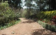 313 Marom Creek Rd, Meerschaum Vale NSW