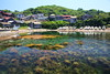 Fishing harbor (Teruhide Tomori) Tags: fishingharbor kyoto sea water countryside japan japon taiza kyotango landscape house fishingboat komafishingharbor 小間漁港 間人 京丹後市 丹後半島 京都 日本 田舎 海 水 海藻 clear