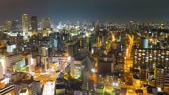 Osaka Tower View 08...