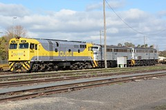 44202, 4497 & 4458 (rob3802) Tags: nsw nswgr nswr alco dl500b 4458 4497 8044 aegoodwin goodwinalco qubelogistics qube juneeroundhouse junee harefield locomotive loco locodepot railway rail railyard diesel diesellocomotive dieselelectriclocomotive 44202 442class xpt
