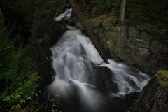 Tannery Falls, Savoy, MA (koperajoe) Tags: rock spring silkywater cpl westernmassachusetts forest freshet nd8 berkshires green longexposure woodsy newengland watefall