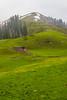 IMG_9519 (mimalkera) Tags: kaghanvalley naran kaghan shogran siripaye payemeadows lakesaifulmalook travelpakistan travelbeautifulpakistan travel wanderlust