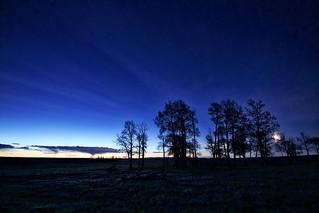 4AM Moon rising Dawn over Calgary