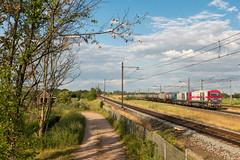 2017.06.05_12218_Blauwkapel_IRP 2102 + 2106 (rcbrug) Tags: irp 2101 2106 g2000 blauwkapel europoort ketels ketelwagens avondzon avond roze pink trein42785bherp