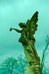 Our Turn to Fly (Thomas Hawk) Tags: mountolivetcemetery mtolivetcemetery nashville tennessee usa unitedstates unitedstatesofamerica angel cemetery sculpture fav10 fav25