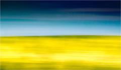 Das Glück schon vor Augen .. (Beppe Rijs) Tags: deutschland germany schleswigholstein schlei frühling spring landschaft landscape natur nature field feld gras horizont horizon grün green clouds farbig colored line linie rape canola raps pastell verzerrt verschwommen blurred blur glück happiness felicity luck fortune chance gelb yellow blau blue greifen griff grab reach hold catch snatch farbe color rural ländlich fertile fruchtbar freshly frisch acker vivid lebhaft