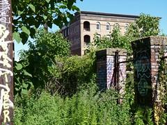 rv101 (daily observer) Tags: readingviaduct philadelphia ghostsign urbandecay overgrown graffiti philadelphiagraffiti abandoned