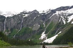 IMG_4440 (chawalte) Tags: avalanche lake avalanchelake west glacier montana glaciernationalpark mountain snow iceberg hike june 2017 national park westglacier kalispell river waterfall bears deer trails trail mountains peaks peak