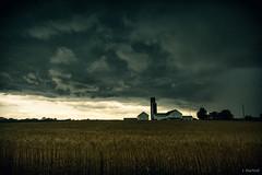 (Jen MacNeill) Tags: wheat rye storm front weather farm farming lancaster pa pennsylvania clouds cloud stormy dramatic sky barn field crop