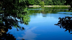 Herrick Lake-Lumix GX85 (Preskon) Tags: nature person retainingwall water path trees herricklakeforestpreserve napervilleil