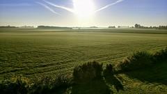 Sjællands Sunrise 🇩🇰 (avaughan585) Tags: denmark sunrise fields green grass sun mist fog farm landscape sky blue sjælland danmark scandinavia skandia