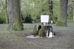 Toilet III (Florian Thein) Tags: berlin kreuzberg installation objettrouvé toilet toilette klo wc schüssel abort wald park forest baum bäume grün green film analog 35mm canonf1 kleinbild kodakportra