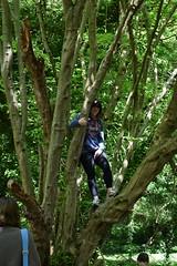 Monkey Business (Steveneva88) Tags: wifey wife family friends tree trees woods woodlands treeclimbing nature naturephotography climbing outdoors naturewalk chalkcliffs