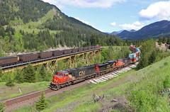 Spence, British Columbia (UW1983) Tags: trains railroads canadiannational cn canadianpacific cp ashcroftsubdivision stacktrains coaltrains spence britishcolumbia