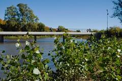 Río Areco (rodrigo.valla) Tags: buenosaires urbana town dof sanantoniodeareco río river