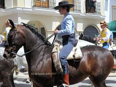 Día de San Isidro. Romería en Alameda (Málaga) (lameato feliz) Tags: caballo jinete brindas romería alameda fiesta