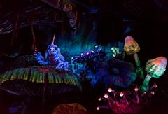 Mushroom Forest (Mark Willard Photography) Tags: tokyo disneyland disneysea disney resort journey center earth captain nemo dark ride jules verne animatronic skippy mushroom forest
