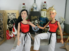 MTM Barbie Action shot two (modcasey) Tags: made movie barbie asian show their moves background diorama