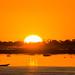 A long way | Pantanal sunset , Corumbá - MS