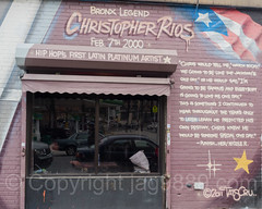 Big Pun Place Mural (2011) by Tats Cru, Foxhurst, Bronx, New York City (jag9889) Tags: 2017 20170605 allamericacity bg183 bigpun bigpunisher bio bronx christopherleerios foxhurst graffiti graffitiartist how hiphop mural muralist musician nosm ny nyc newyork newyorkcity nicer outdoor painting place rapper streetart tagging tatscru thebronx themuralkings usa unitedstates unitedstatesofamerica wall jag9889 us