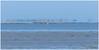 sized_HP028158 (Hetwie) Tags: clouds warmte beach wierum waddenzee strand sea zee friesland nederland