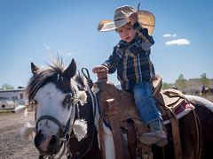 Cowboy (_bobmcclure_) Tags: cowboy williams arizona jackfuller roping