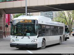 Winnipeg Transit #870 (vb5215's Transportation Gallery) Tags: winnipeg transit 2015 new flyer xd40 xcelsior