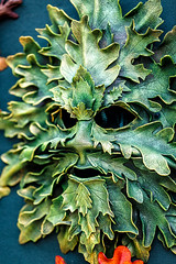 5/14 Green Man Mask (Karol A Olson) Tags: greenmanfestival greenbelt maryland festival arty earthy may17 leather mask greenman craft 77masks 117picturesin2017 project3652017 mdpd2017